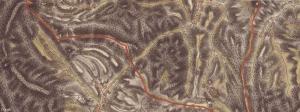 Inovce na mape z prvého vojenského mapovania (1763 - 1787), zdroj http://mapire.eu/en/